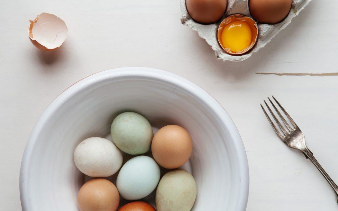Menù di Pasqua | Easter's menu | Ostermenü – 2019